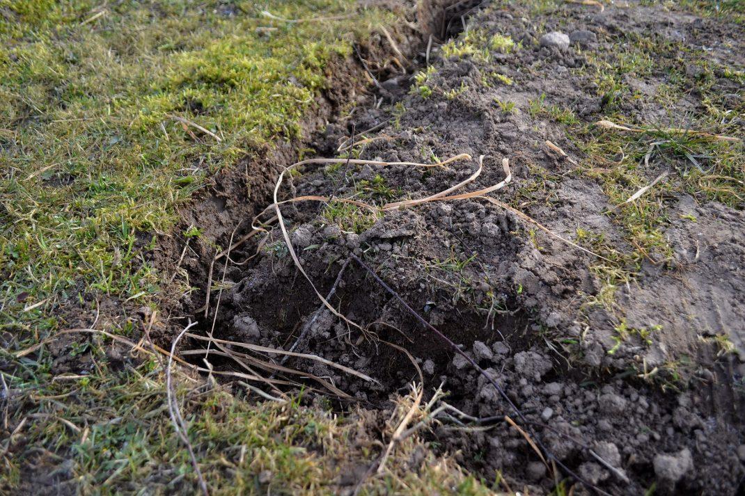 En kant grävd i gräsmattan