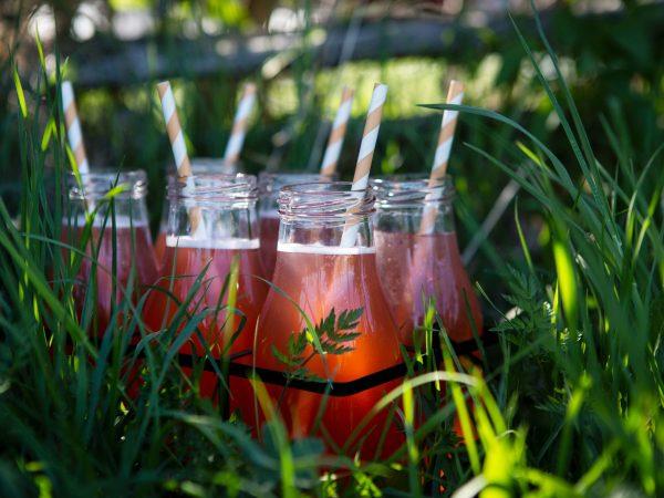 Sex fina glasflaskor med rosaröd rabarbersaft står i gräset med vackert ljus som strilar mellan bladen.