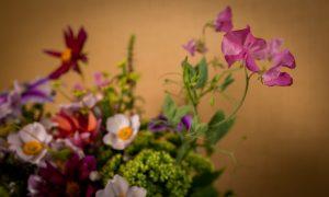 Luktärter i blomsterarrangemang