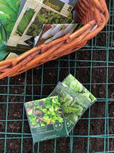 Närbild på en korg med fröer och fröpåsar som ligger på jorden.